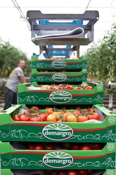 Hortipower Productkwaliteit